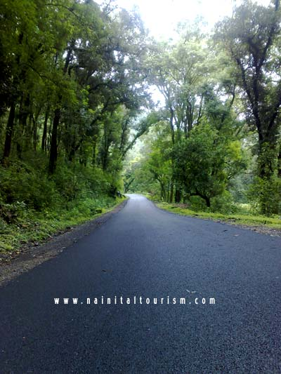 nainital tourism drive safely  hilly areas safety Winter Weather Driving Tips