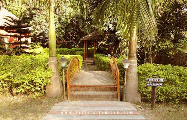Buy Resort in Corbett National Park