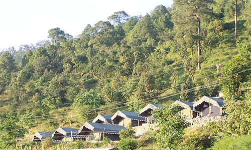 Camping in Nainital - Naina Devi Jungle Camp Mangoli