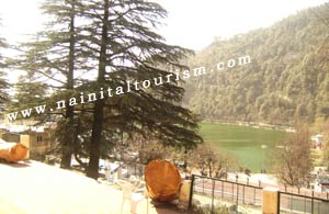 BUY A COTTAGE IN NAINITAL