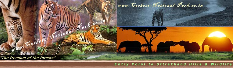 How To Reach - Corbett National Park