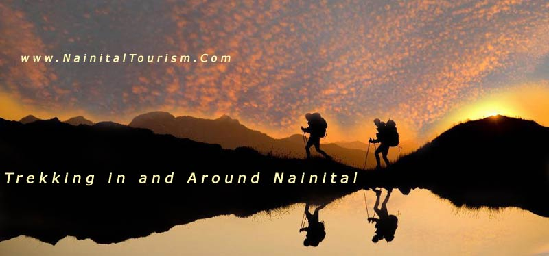 Trekking Options in and Around Nainital