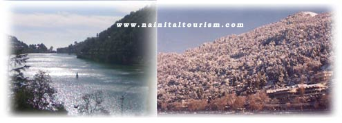 sight of nainital