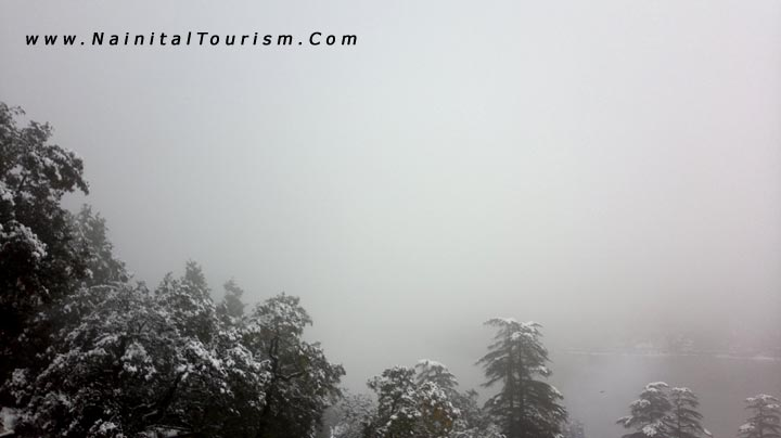 NAINITAL TOURISM : PICTURE GALLERY OF SNOWFALL